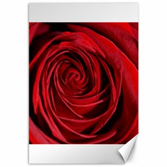 Beautifully Red Canvas 12  X 18   by timelessartoncanvas