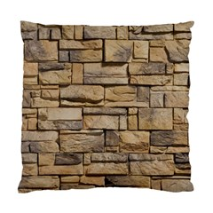 Block Wall 1 Standard Cushion Case (one Side)  by trendistuff