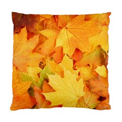 Yellow Maple Leaves Standard Cushion Case (one Side)  by trendistuff