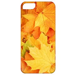 Yellow Maple Leaves Apple Iphone 5 Classic Hardshell Case by trendistuff