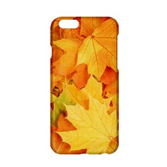Yellow Maple Leaves Apple Iphone 6/6s Hardshell Case