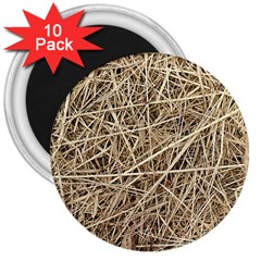Light Colored Straw 3  Magnets (10 Pack)  by trendistuff