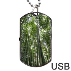 Bamboo Grove 1 Dog Tag Usb Flash (two Sides)  by trendistuff