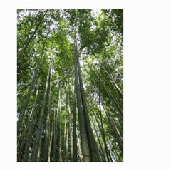 Bamboo Grove 1 Small Garden Flag (two Sides) by trendistuff