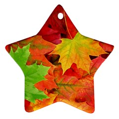 AUTUMN LEAVES 1 Star Ornament (Two Sides)  by trendistuff