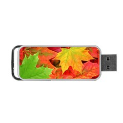 Autumn Leaves 1 Portable Usb Flash (one Side) by trendistuff