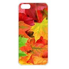 Autumn Leaves 1 Apple Iphone 5 Seamless Case (white) by trendistuff