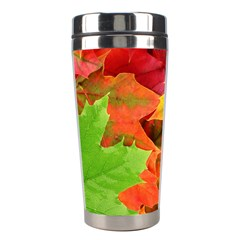 Autumn Leaves 1 Stainless Steel Travel Tumblers by trendistuff