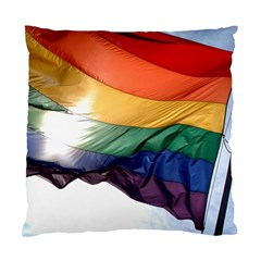Pride Flag Standard Cushion Cases (two Sides)  by trendistuff