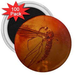 MOSQUITO IN AMBER 3  Magnets (100 pack) by trendistuff