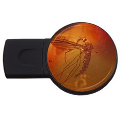 Mosquito In Amber Usb Flash Drive Round (2 Gb)  by trendistuff