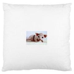 Sphynx Kitten Standard Flano Cushion Cases (Two Sides)  by TailWags