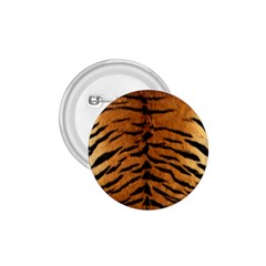 Tiger Fur 1 75  Buttons by trendistuff