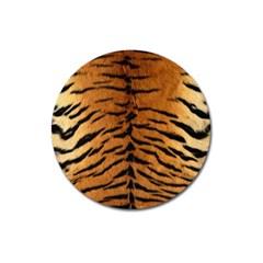 Tiger Fur Magnet 3  (round) by trendistuff