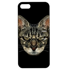 Angry Cyborg Cat Apple Iphone 5 Hardshell Case With Stand by dflcprints
