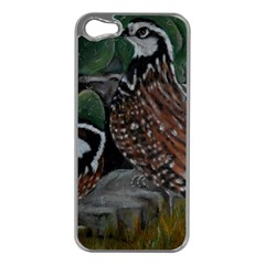 Bobwhite Quails Apple Iphone 5 Case (silver) by timelessartoncanvas
