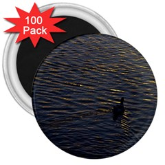 Lonely Duck Swimming At Lake At Sunset Time 3  Magnets (100 Pack) by dflcprints