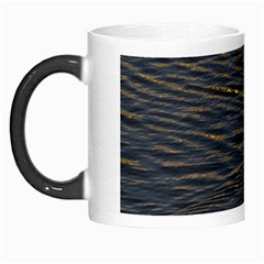 Lonely Duck Swimming At Lake At Sunset Time Morph Mugs by dflcprints