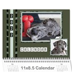 Green Frame Male 2018 Calendar (any year) - Wall Calendar 11  x 8.5  (12-Months)