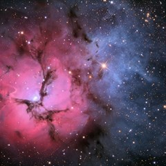 Trifid Nebula Canvas 12  X 12