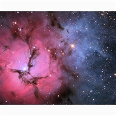 Trifid Nebula Canvas 16  X 20