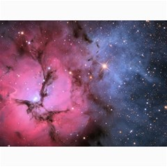 Trifid Nebula Canvas 18  X 24