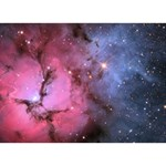 TRIFID NEBULA Peace Sign 3D Greeting Card (7x5)  Back