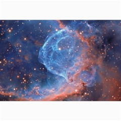 Thor s Helmet Canvas 12  X 18