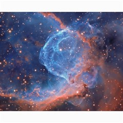 Thor s Helmet Canvas 16  X 20