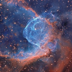 Thor s Helmet Canvas 20  X 20