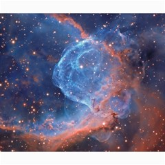 Thor s Helmet Canvas 20  X 24