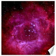 Rosette Nebula 1 Canvas 20  X 20   by trendistuff