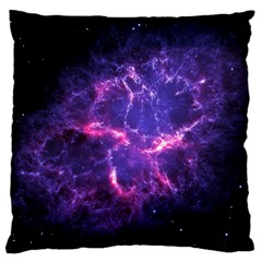 Pia17563 Large Cushion Cases (one Side)  by trendistuff