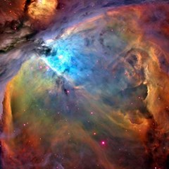 Orion Nebula Canvas 16  X 16   by trendistuff