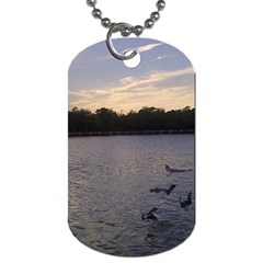 Intercoastal Seagulls 3 Dog Tag (two Sides) by Jamboo