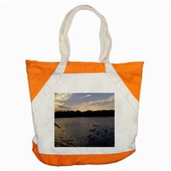 Intercoastal Seagulls 3 Accent Tote Bag  by Jamboo
