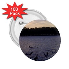 Intercoastal Seagulls 3 2 25  Buttons (100 Pack)  by Jamboo