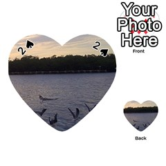 Intercoastal Seagulls 3 Playing Cards 54 (heart)