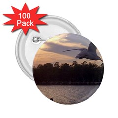 Intercoastal Seagulls 4 2 25  Buttons (100 Pack)  by Jamboo