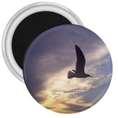 Seagull 1 3  Magnets by Jamboo