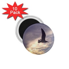 Seagull 1 1 75  Magnets (10 Pack)