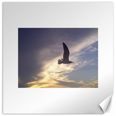 Seagull 1 Canvas 12  X 12   by Jamboo