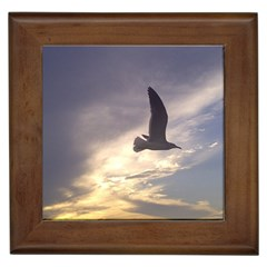 Fly Seagull Framed Tiles by Jamboo