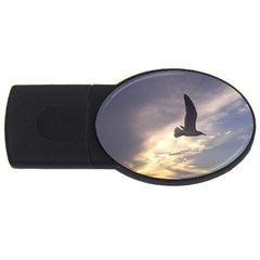 Fly Seagull Usb Flash Drive Oval (4 Gb)  by Jamboo