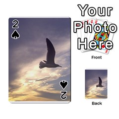 Fly Seagull Playing Cards 54 Designs