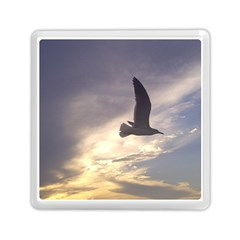 Fly Seagull Memory Card Reader (square)  by Jamboo