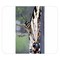 Butterfly 1 Double Sided Flano Blanket (small)  by Jamboo
