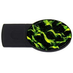 Green Northern Lights Usb Flash Drive Oval (2 Gb)  by Costasonlineshop