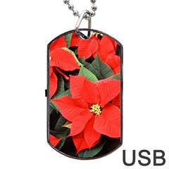 POINSETTIA Dog Tag USB Flash (One Side) by trendistuff