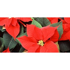 Poinsettia You Are Invited 3d Greeting Card (8x4)